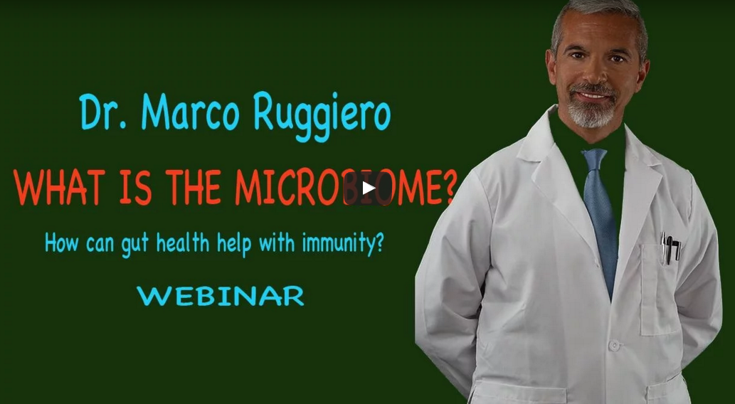 Dr Marco Ruggiero, How can gut health help with immunity?