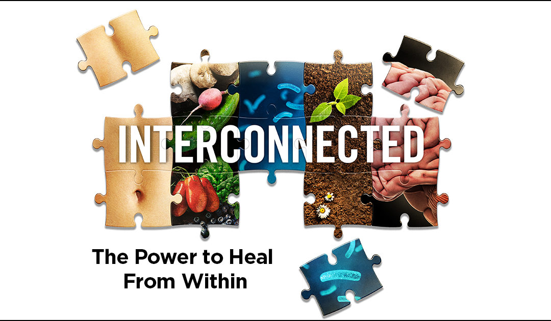 Interconnected – The Power to Heal from Within